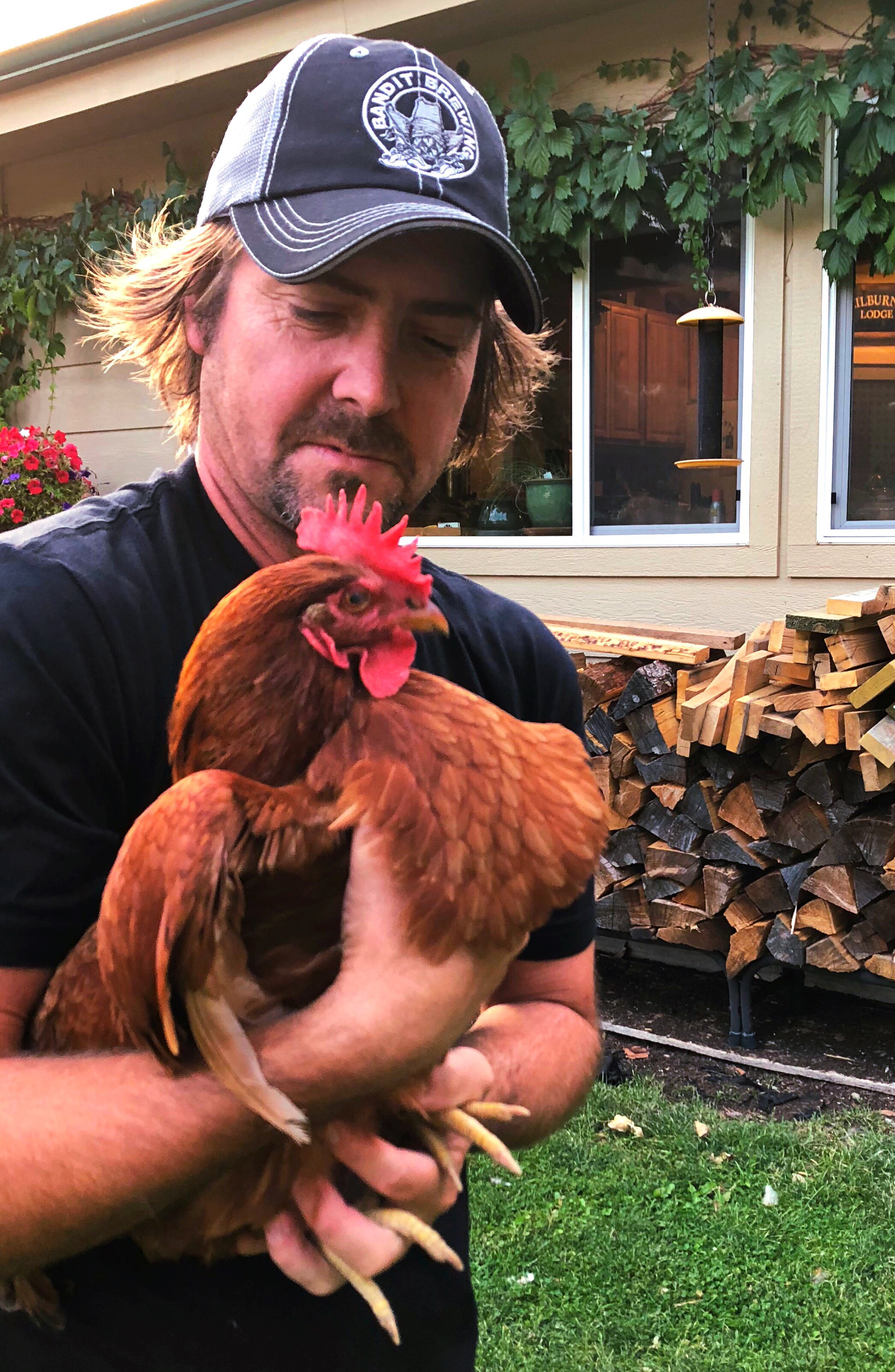 Our alpha chicken!